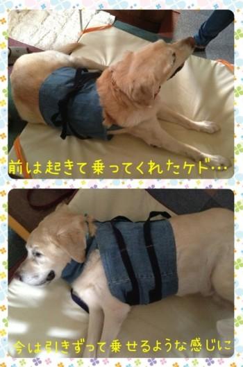blog2_20140608230407489.jpg