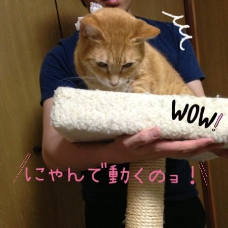 blog5_20140521224839c05.jpg