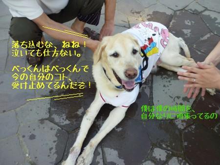 blog6_20140608231217b3c.jpg