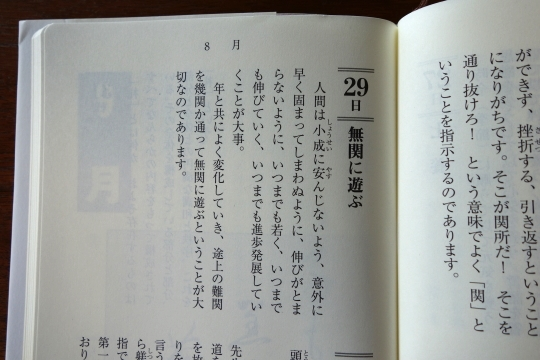 DSC5026yasua.jpg