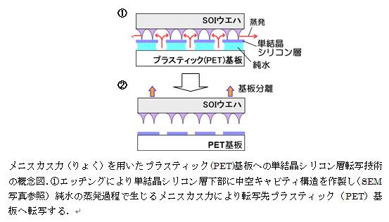 HiroshimaUniv_single-crystaline-silicon_process.jpg