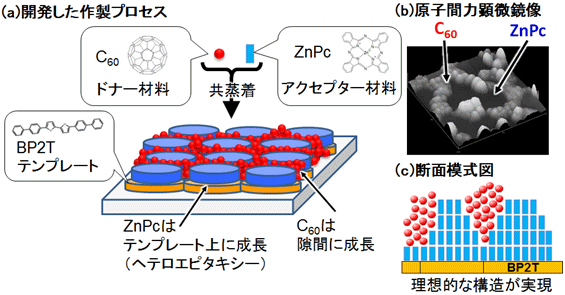 aist_organicPV_crystal_growth_control_structure_image.png