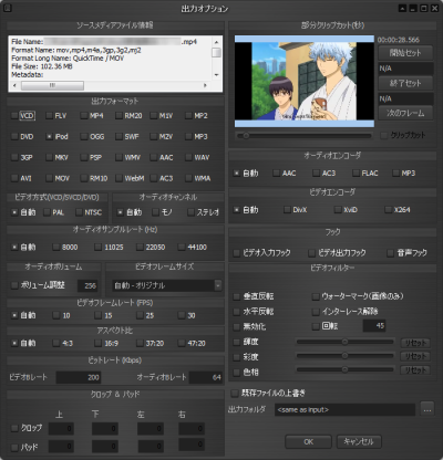 EDM2014 Video Converter 出力オプション