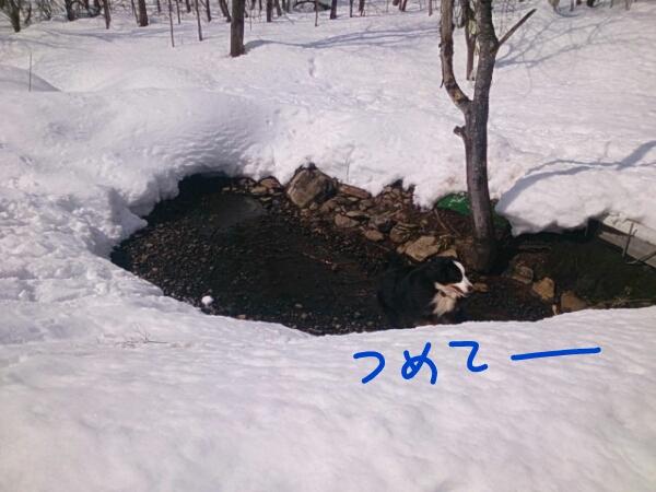 fc2_2014-03-22_20-26-40-096.jpg