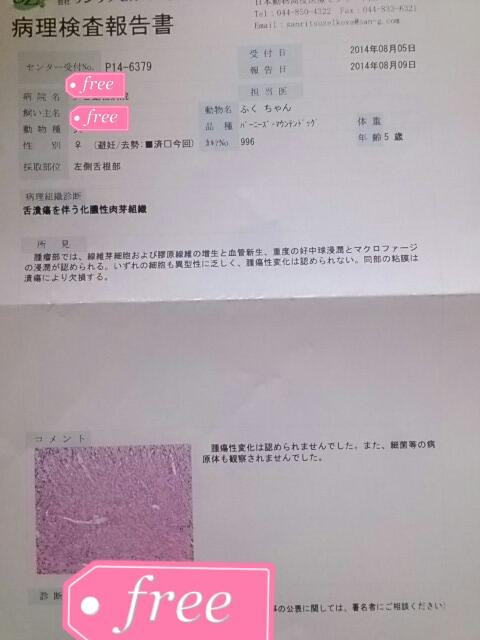fc2_2014-08-09_20-11-00-371.jpg