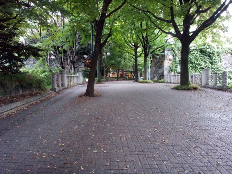 misono_00.jpg