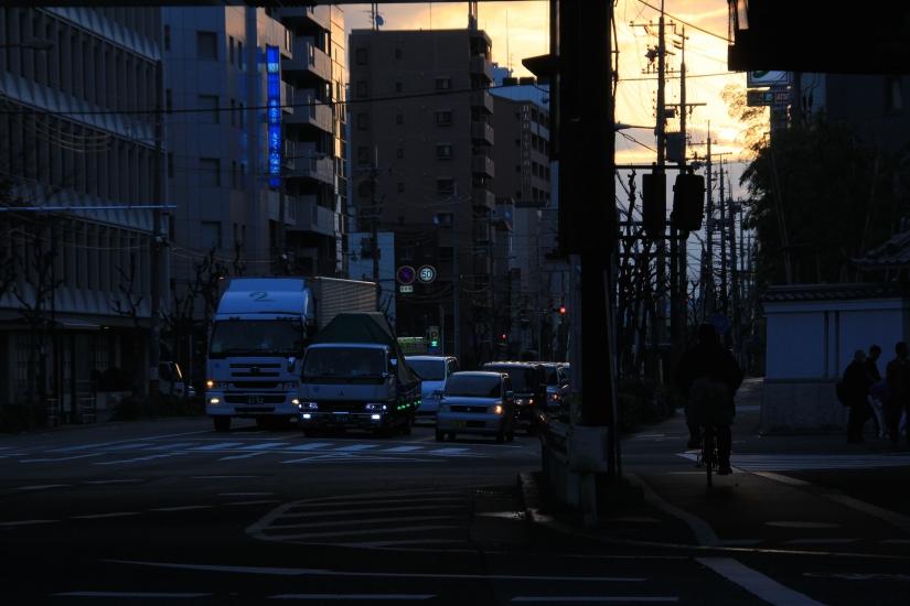 IMG_7190.jpg