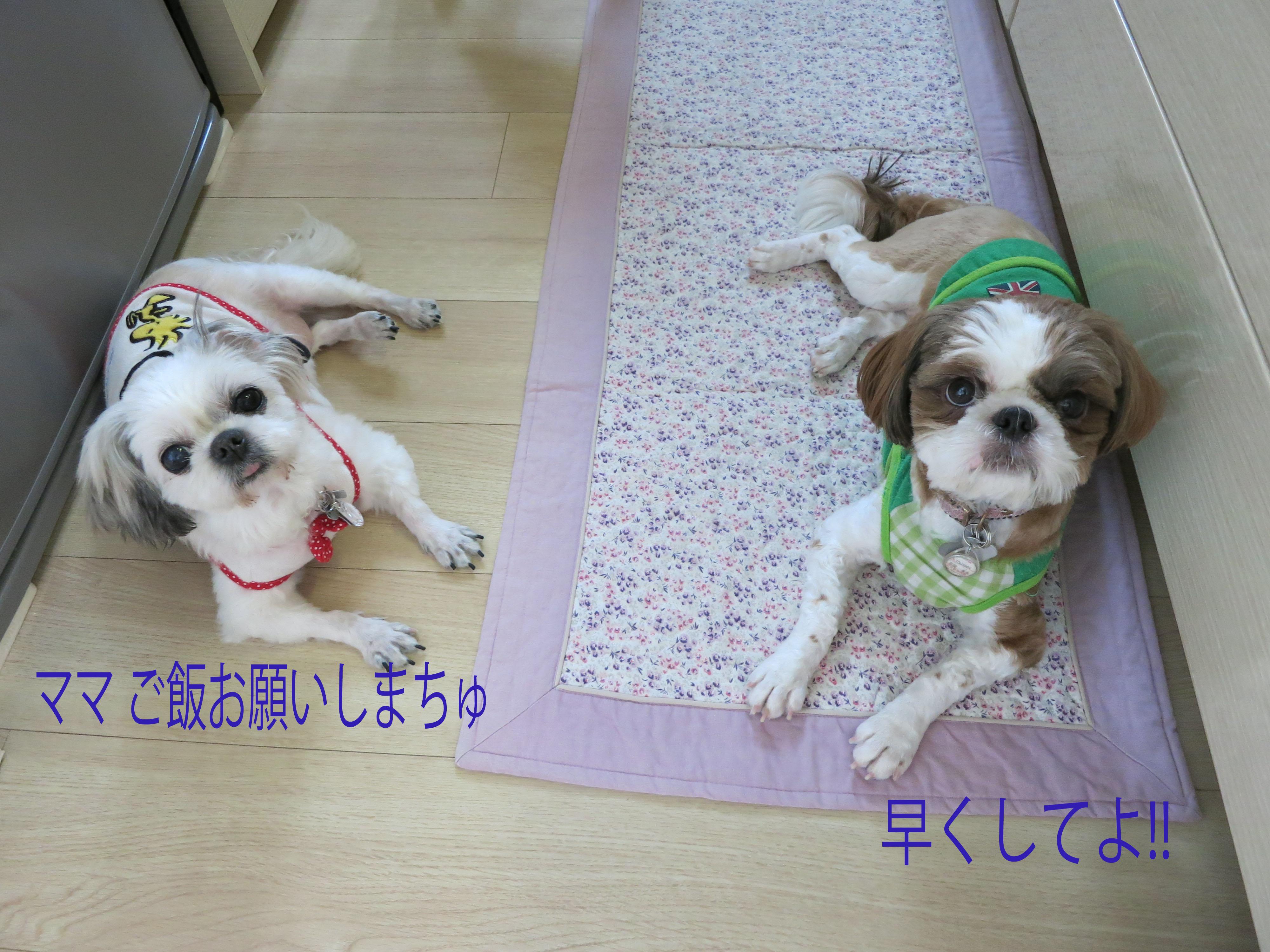 mikuhana__0101.jpg