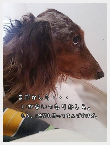 0224_0004.jpg