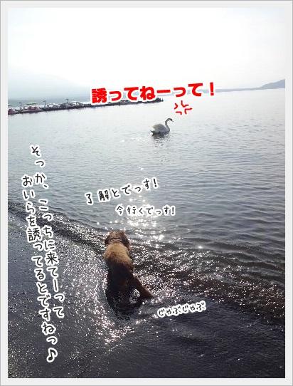 0603_0005.jpg