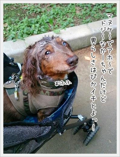 0731_0002.jpg