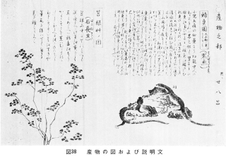「七湯の枝折」産物の図1