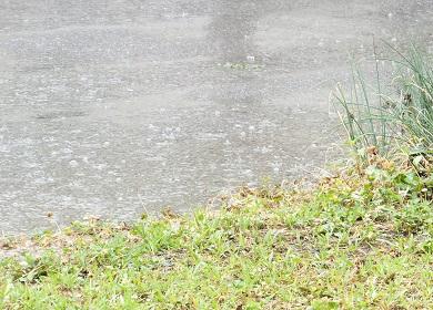 強くなる雨