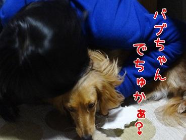DSC01956.jpg