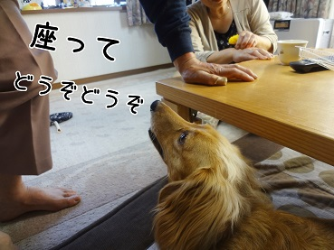 kinako129.jpg