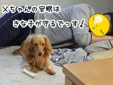 kinako221.jpg