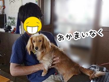 kinako278.jpg