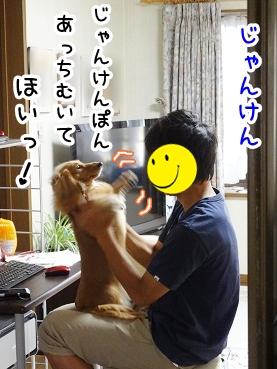 kinako330.jpg