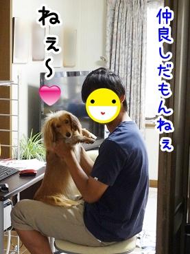 kinako331.jpg