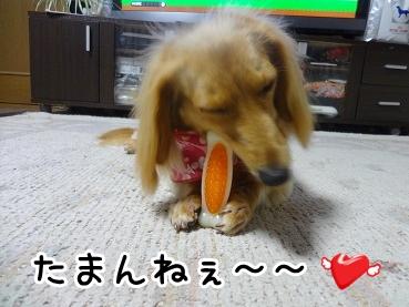 kinako427.jpg