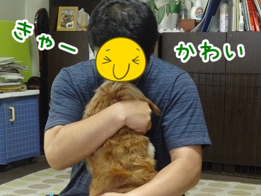 kinako513.jpg