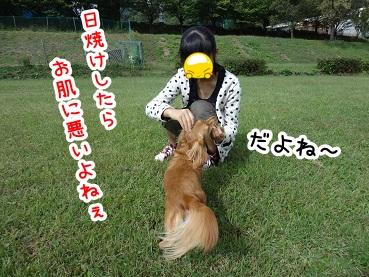 kinako514.jpg