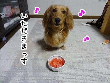 kinako566.jpg