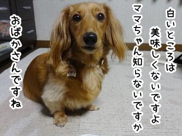 kinako572.jpg
