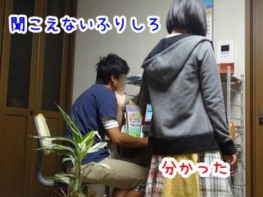 kinako621.jpg