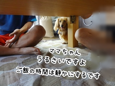 kinako664.jpg