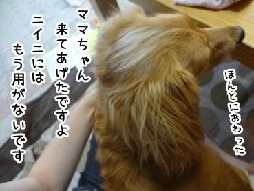 kinako666.jpg