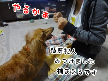kinako677.jpg