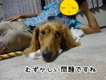 kinako731.jpg