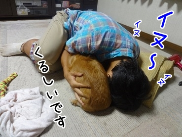 kinako732.jpg