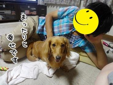 kinako733.jpg