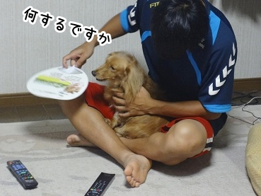 kinako746.jpg