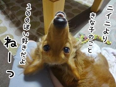 kinako752.jpg