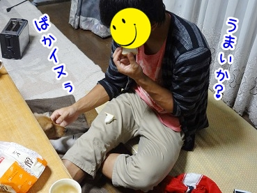 kinako846.jpg