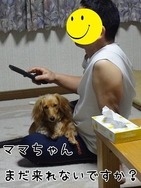 kinako89.jpg