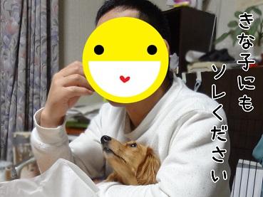 kinako90.jpg