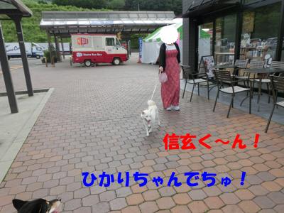 20140717182936877.jpg