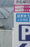 IMGP6122.jpg