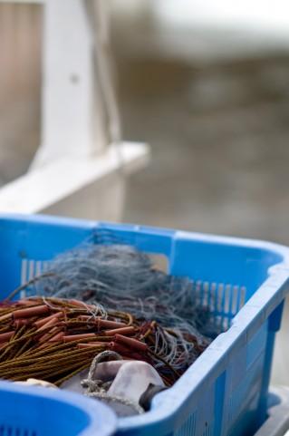 福島県いわきの魚、東京築地に初出荷