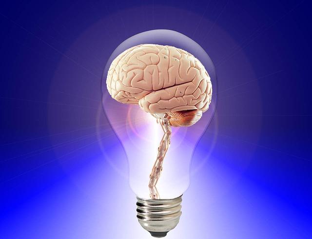 【予知】 脳波の「ノイズ」で、行動を数秒前に予測