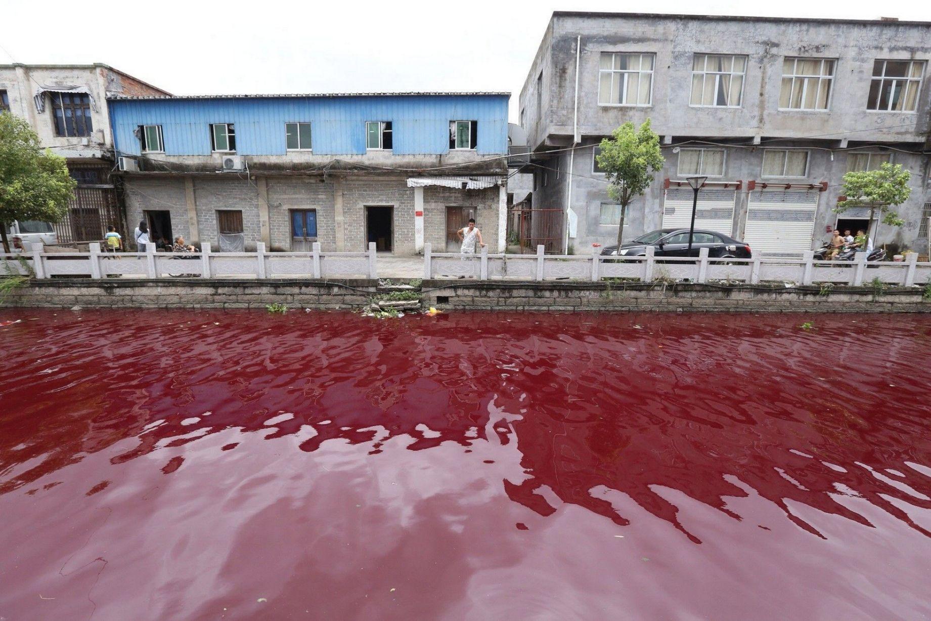 【中国】 突然、川が血の色のように真っ赤に染まる…地元は騒然