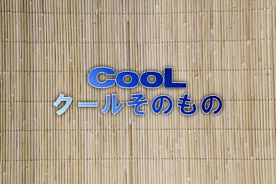 rattan_new_cool.jpg