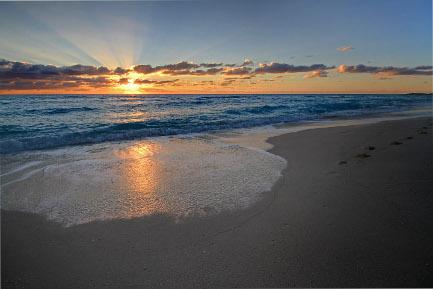 stockvault-beach135627.jpg