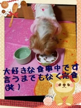 fc2blog_20140317221640ff7.jpg