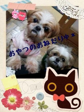 fc2blog_201403192154376cc.jpg