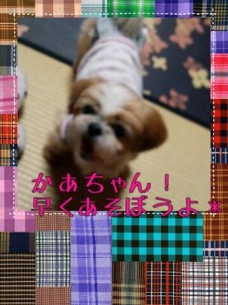 fc2blog_20140322212823724.jpg